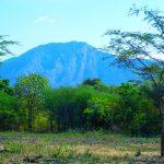 Gunung Baluran