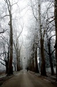 Winter in Bosnia