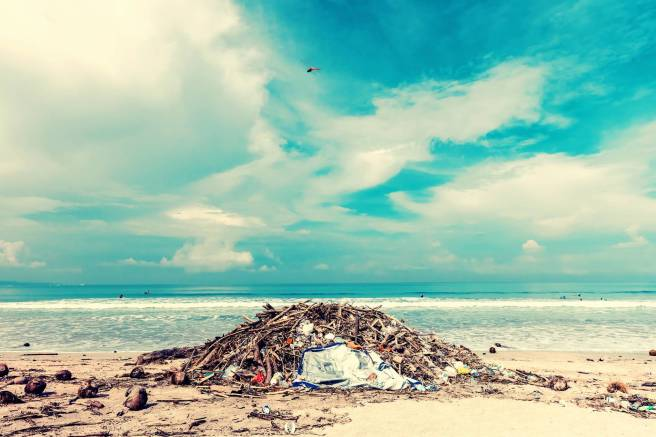 photo of trash lot on shore