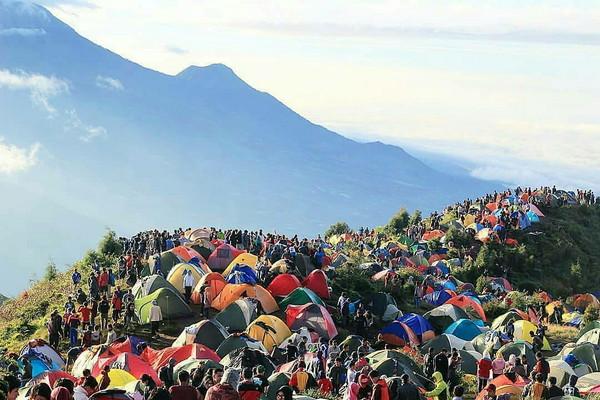 Tempat Camping di Dieng