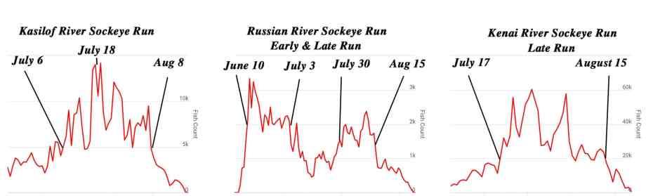 Alaska Sockeye Fishing - Kasilof River Sockeye, Russian River Sockeye, and Kenai River Sockeye run timing