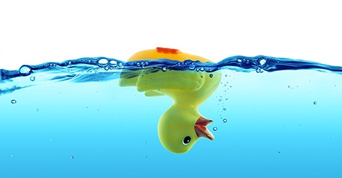 duck drowned - failure and SOS concept