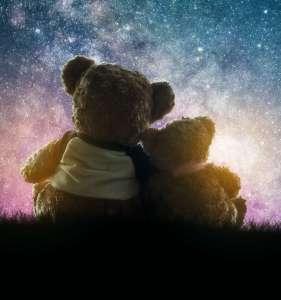 Cuddling teddies