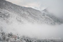Misty Mountain at Day Break