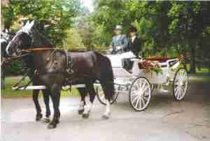 Tiedemanns Kutsch Und Planwagenfahrten Uchte Hochzeitskutsche