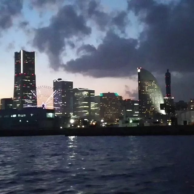#シーバス#横浜 #天パの休日