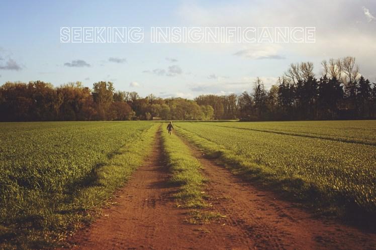seeking insignificance