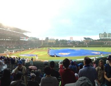 Cubs Win Cubs Win