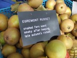 crailing-labels-egremont-russet