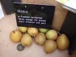 crailing-labels-hessle