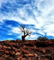 Lyman Lake State Park in Arizona. (Photo/Kendra Yost)