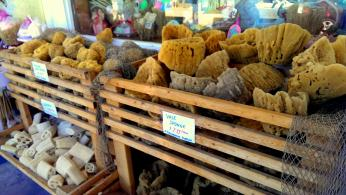 Sea Sponges for sale in Tarpon Springs, Florida. Photo/Kendra Yost