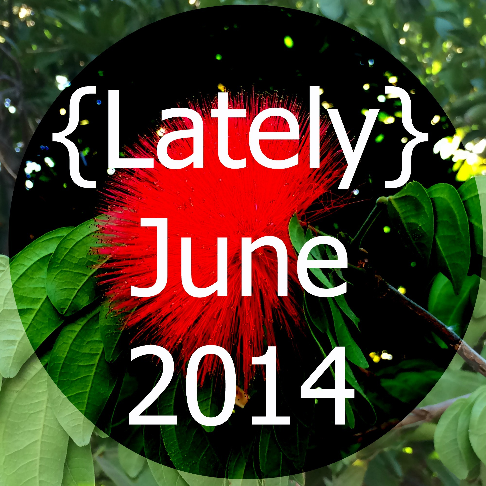 Lately // June 2014 Edition