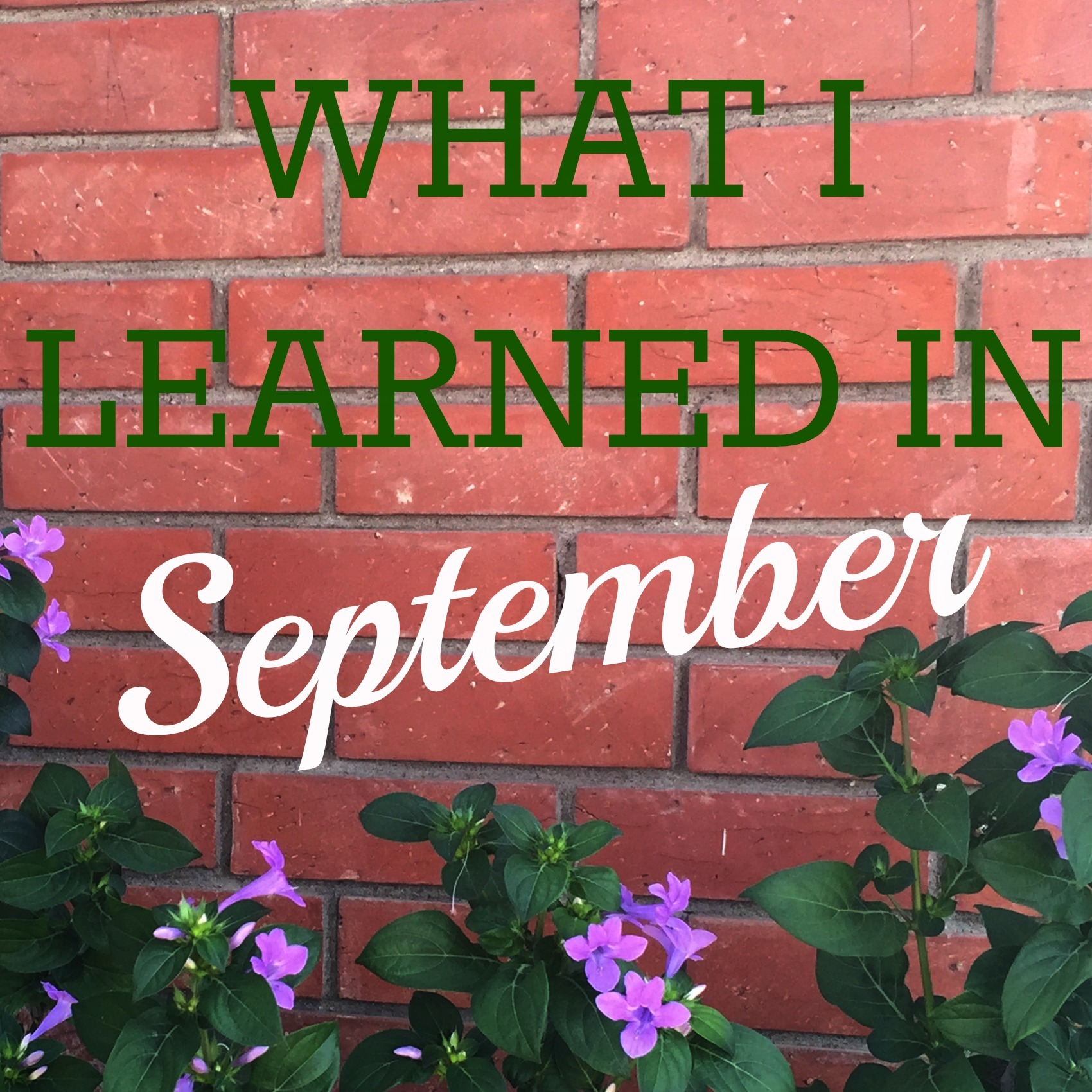 What I Learned in September