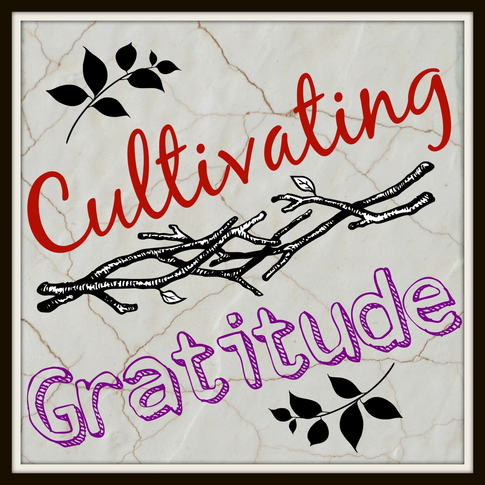 Cultivating Character // Gratitude