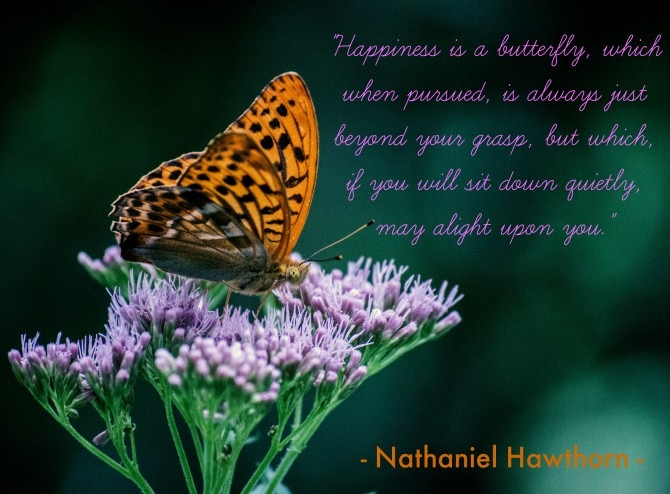 """Happiness is a butterfly, which when pursued, is always just beyond your grasp, but which, if you will sit down quietly, may alight upon you."" ~ Nathaniel Hawthorn"