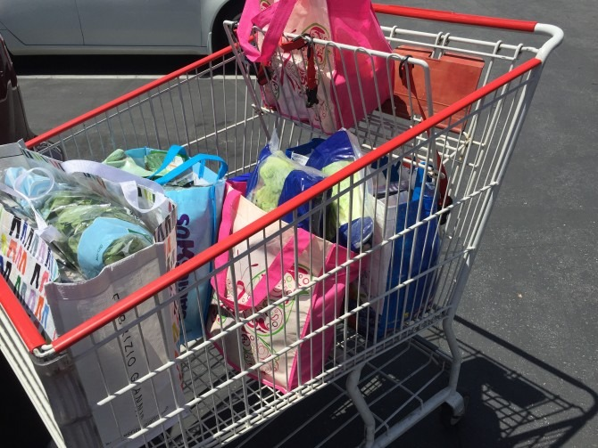 Bagged Costco Groceries