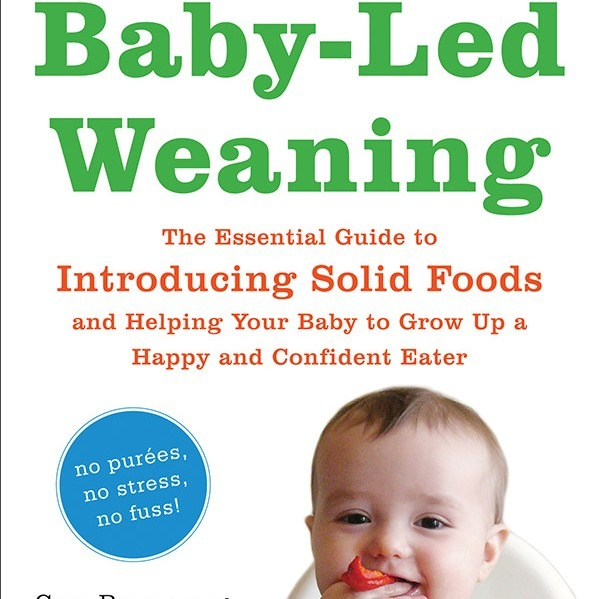 Baby-Led Weaning: The Essential Guide to Introducing Solid Foods // Book Review
