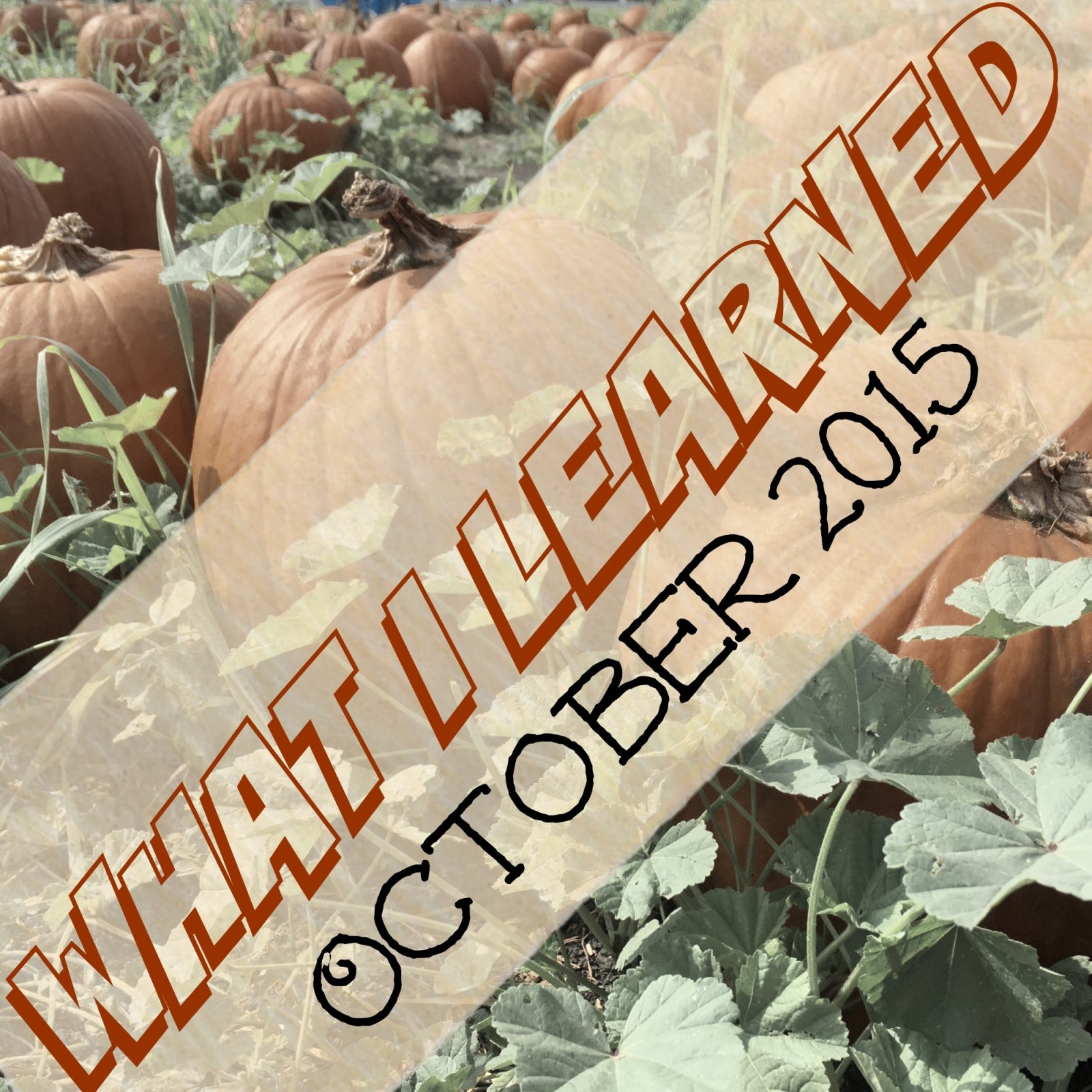 What I Learned in October {2015}