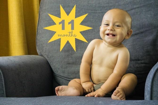 Charlie 11 Months