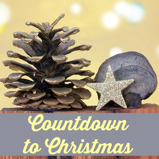 Countdown to Christmas: My Favorite Sights of the Season