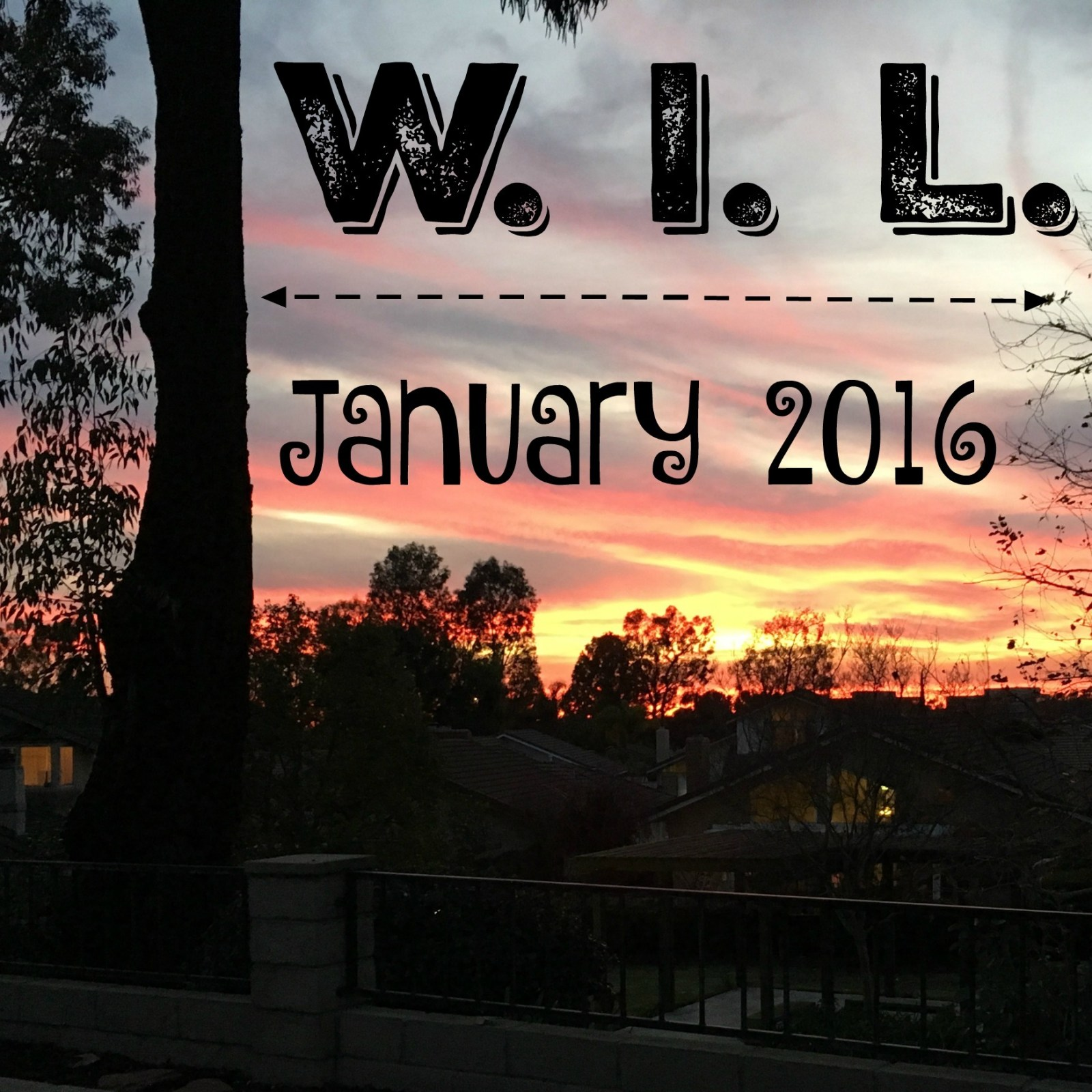 What I Learned in January {2016}