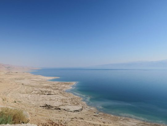 Dying in the Dead Sea