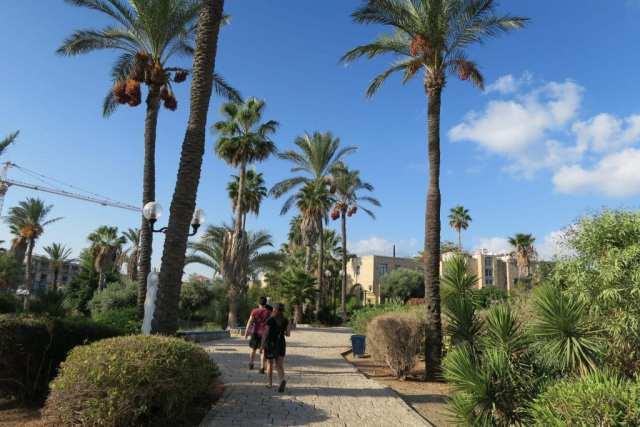 Israel Travel Spending