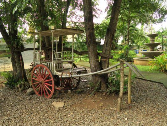 Palawan, Philippines - Puerto Princesa City Tour Review (23 Pictures!)