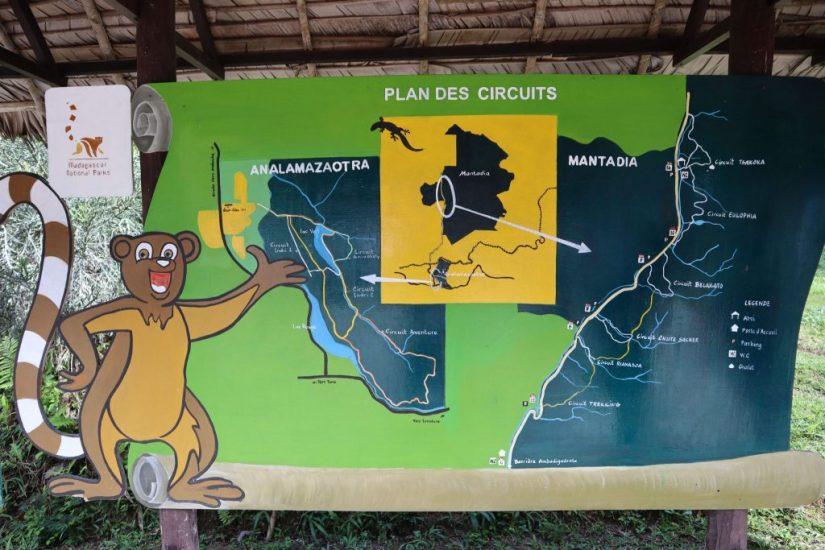 Andasibe, Andasibe National Park – Doing A Lemur Safari In Analamazotra