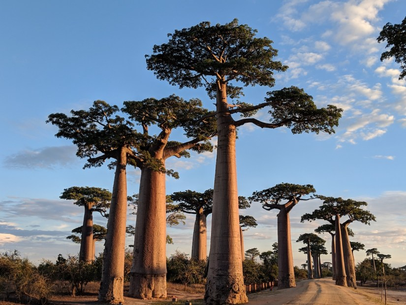 madagascar, Madagascar – Country #77 In My Mission to Visit All the Countries in the World