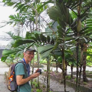Cultivated Palms with Scott Zona