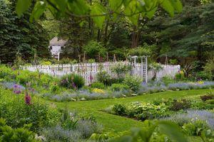 Vegetable_garden