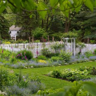 Perennials in a Layered Garden with David L. Culp
