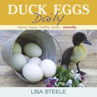 ST LYNN'S PRESS - Duck Eggs Daily Cvr