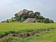 a kopje in the Serengeti