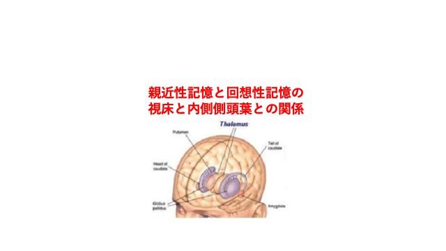 親近性記憶と回想性記憶の視床と内側側頭葉との関係