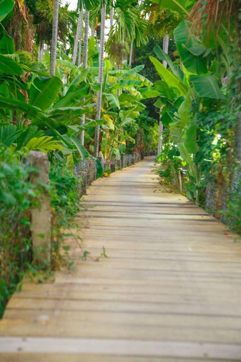 """Suri Mũi Né homestay: """"Ốc đảo"""" Xanh và mát nơi Phan Thiết đầy nắng gió"""