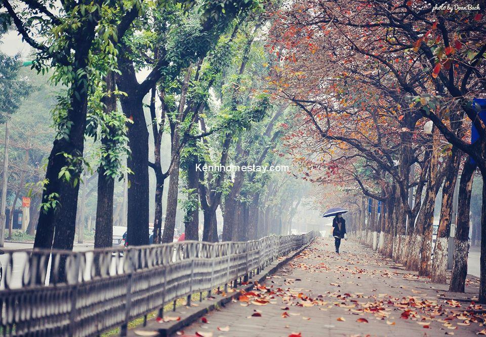 Tháng 11 nên du lịch ở đâu? Phượt 20 nơi đẹp không thể bỏ qua trong tháng 11