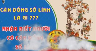 can-dong-so-linh