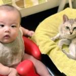 息子と愛猫
