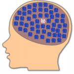 Vol.187 リハビリテーション分野における脳画像のみかた①