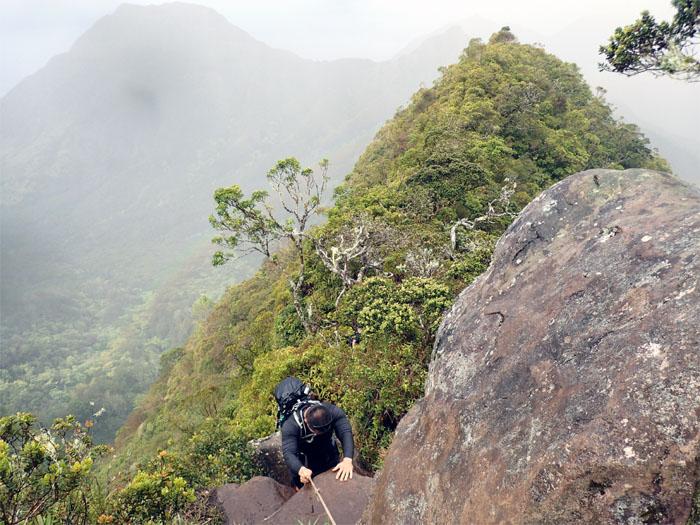 Hiking Waianae To Mount Kaala To Kaala Road KenjiSAITO