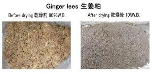 生姜粕 乾燥前後 2017.6.6