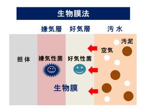 生物膜法 排水処理法 汚泥乾燥 KENKI DRYER 2018.2.24