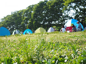 キャンプ場イメージ