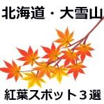 【画像】北海道大雪山の紅葉2017見ごろ時期(赤岳銀泉台・黒岳層雲峡・旭岳)と気温情報