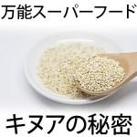 キヌアとは?栄養・効果・成分・糖質・カロリーは?一日の摂取量と副作用はある?