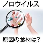 ノロウイルス食中毒原因の食材種類・感染症症状や予防法!食あたりとの違いも!