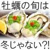 牡蠣は海のミルク!旬シーズンはいつから?亜鉛の栄養素効果と食べ過ぎは大丈夫?